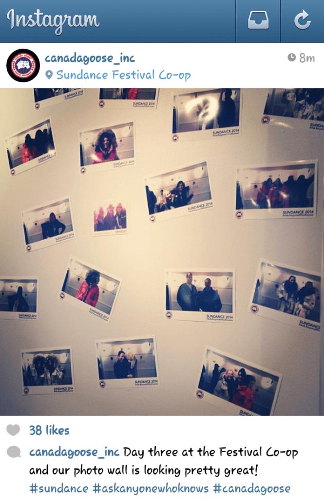 canada goose photo wall